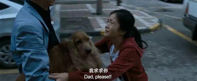 有狗的做爱电影没有_狗十三