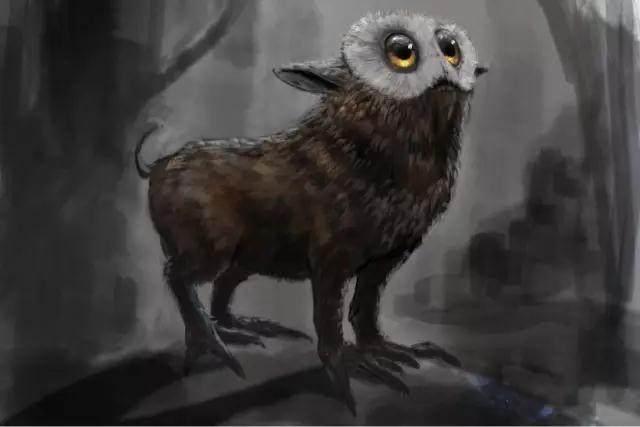 《神奇动物在哪里》,这些魔法生物到底神奇在哪里?