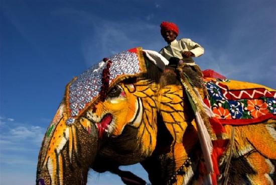 大象起舞:印度家电市场的投资机遇与挑战 家电消费在起步