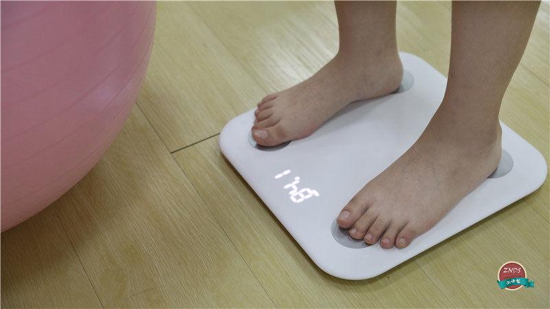 体脂秤什么牌子好?三款主流智能体脂称对比横评