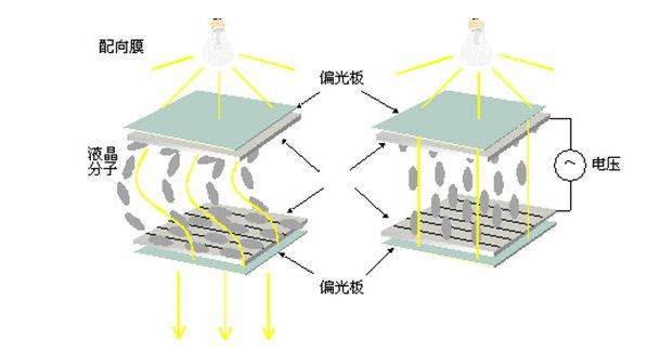 液晶显示屏的原理_液晶显示屏