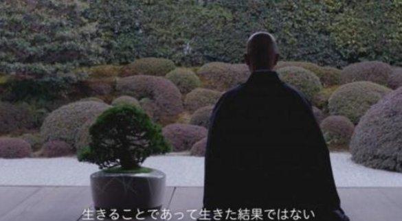 日本发明智能盆栽 可自动追逐阳光并与人聊天