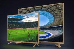 对手or朋友? 小米电视4A PPTV订制版电视发布