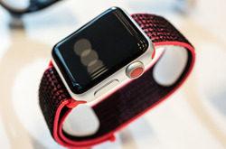 Apple Watch Series 3蜂