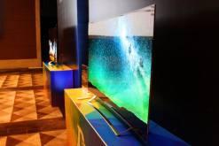 OLED电视打响年终反