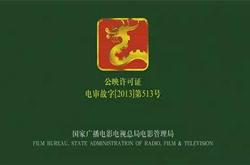 广电总局:停播节