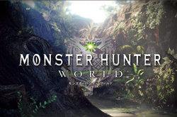 游戏《怪物猎人: