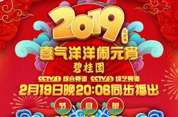 2019央视元宵晚会节目单曝光,智能电视如何收看直播?