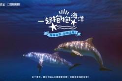 虹领金跨界中国国