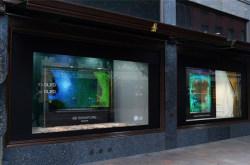 LG展示透明OLED屏,